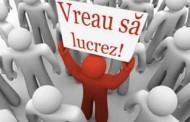 Peste 26 de mii de locuri de muncă vacante la nivel naţional. Câte sunt la Cluj