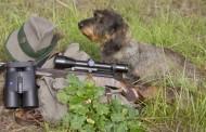 Braconier, la un pas să împuște intenționat un paznic pe un fond de vânătoare