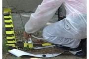 ŞOCANT - O româncă şi-a decapitat copilul de 4 anişori