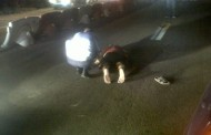 Sfârşit groaznic pentru un tânăr de 28 de ani. A fost lovit de două maşini pe DN1