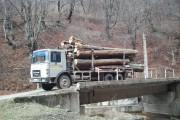 Hoți de lemne, prinși la Florești cu