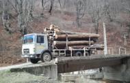 Hoți de lemne din Cluj, prinși în timp ce transportau 80 de bușteni fără acte