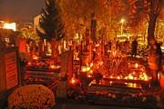 Clujenii merg la Luminaţie astăzi! Vă dăm un pont: Flori şi lumânări la reducere
