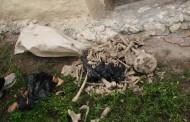 Descoperire MACABRĂ! Fragmente din corpul unei femei, găsite pe un câmp din Cluj
