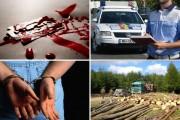 Mii de furturi și permise suspendate, crime și alte sute de infracțiuni. Așa arată statistica Poliției Cluj pentru primele 9 luni ale acestui an