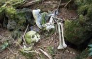 Descoperire macabră în pădurea bântuită de la Hoia, lângă Cluj-Napoca