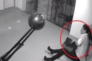 VIDEO-Pițipoancă filmată