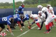Cluj Crusaders atacă titlul de campioană ȋn noul sezon