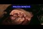Carne transportată în condiții mizerabile urma să ajungă în magazinele din Cluj-Napoca