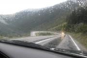 5 sfaturi de conducere pe timp ploios