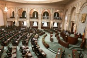 OUG 14, aprobată de Senat. Camera Deputaţilor este forul decizional