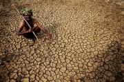 Căldură ucigătoare în India. Peste 2000 de persoane au murit