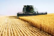"""Fermierii clujeni s-au """"șmecherit"""". Fentează Uniunea Europeană pentru a încasa subvenții"""