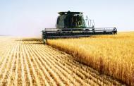 ANAF propune formulare pentru regimul special de TVA pentru agricultori