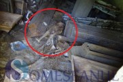 VIDEO 18+ Cadavre mumificate într-un cimitir din județul Cluj. Te ia cu groază, încă mai au urme de haine