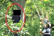 FOTO - Încă o sinucidere în județul Cluj. O tânără s-a spânzurat de un copac. Ce motive a avut