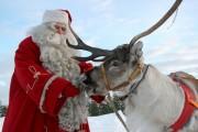 (P) Moș Crăciun și Moș Nicolae, de închiriat în Cluj-Napoca
