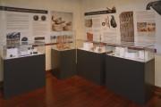 """1 iunie 2016 - """"Vânătoarea de exponate"""" la Muzeul de Istorie Turda"""