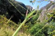 Se inaugurează traseul de vizitare al defileului Rezervației Naturale Cheile Turenilor