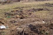 Soarta Parcului Feroviarilor s-ar putea schimba