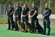114 câini polițiști își caută conductori. La Cluj sunt 4 posturi libere