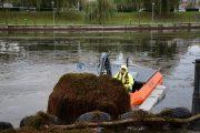 FOTO/VIDEO - 15 tone de vegetație acvatică au fost colectate din Someșul Mic cu utilajul amfibiu