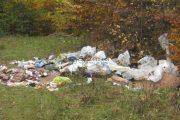 """FOTO - Clujean """"ars"""" la buzunar pentru depozitare ilegală de deșeuri în pădurea Făget"""