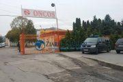 UPDATE - FOTO: Percheziții la ONCOS și alte firme. Prejudiciul adus statului este uriaș