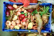 FOTO - Cum să reduci risipa alimentară de sărbători: cina comunitară ajunge  la ediția a II-a la Cluj
