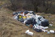 Amendă usturătoare pentru depozitarea ilegală a deșeurilor în pădurea Făget