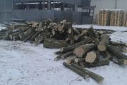 Polițiștii clujeni se laudă că au confiscat lemne de foc în prag de Crăciun. Cuiva îi va fi cald de sărbători