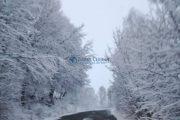 FOTO - Iarna s-a întors în județul Cluj, în unele zone va ninge în continuare. Imagini reale din dimineața zilei de 7 aprilie