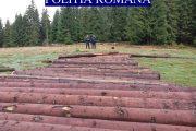 FOTO - Hoții de lemne au crezut că furtuna le-a facilitat furtul, polițiștii din Beliș i-au urmărit și le-au stricat calculele