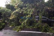 FOTO - Furtuna de duminică a creat din nou probleme în județul Cluj