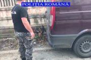 VIDEO - Razie în Piața Mărăști