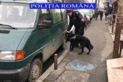 VIDEO - Materialele pirotehnice, căutate în zona piețelor cu câini antrenați