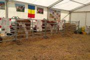 Evenimentul agricol numărul 1 din Transilvania e în plină desfășurare