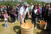 Ceremonialul de măsuriș reconstituit în Parcul Etnografic Cluj