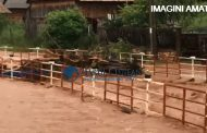 VIDEO - Efectul defrișărilor de păduri în zona de munte a județului Cluj