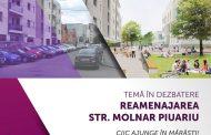 Cum urmează să arate strada Molnar Piuariu