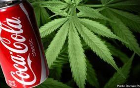 Coca-Cola ar putea avea o băutură cu marijuana