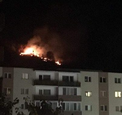 Un hectar din pădurea Hoia, de lângă Cluj-Napoca, a fost mistuit de flăcări