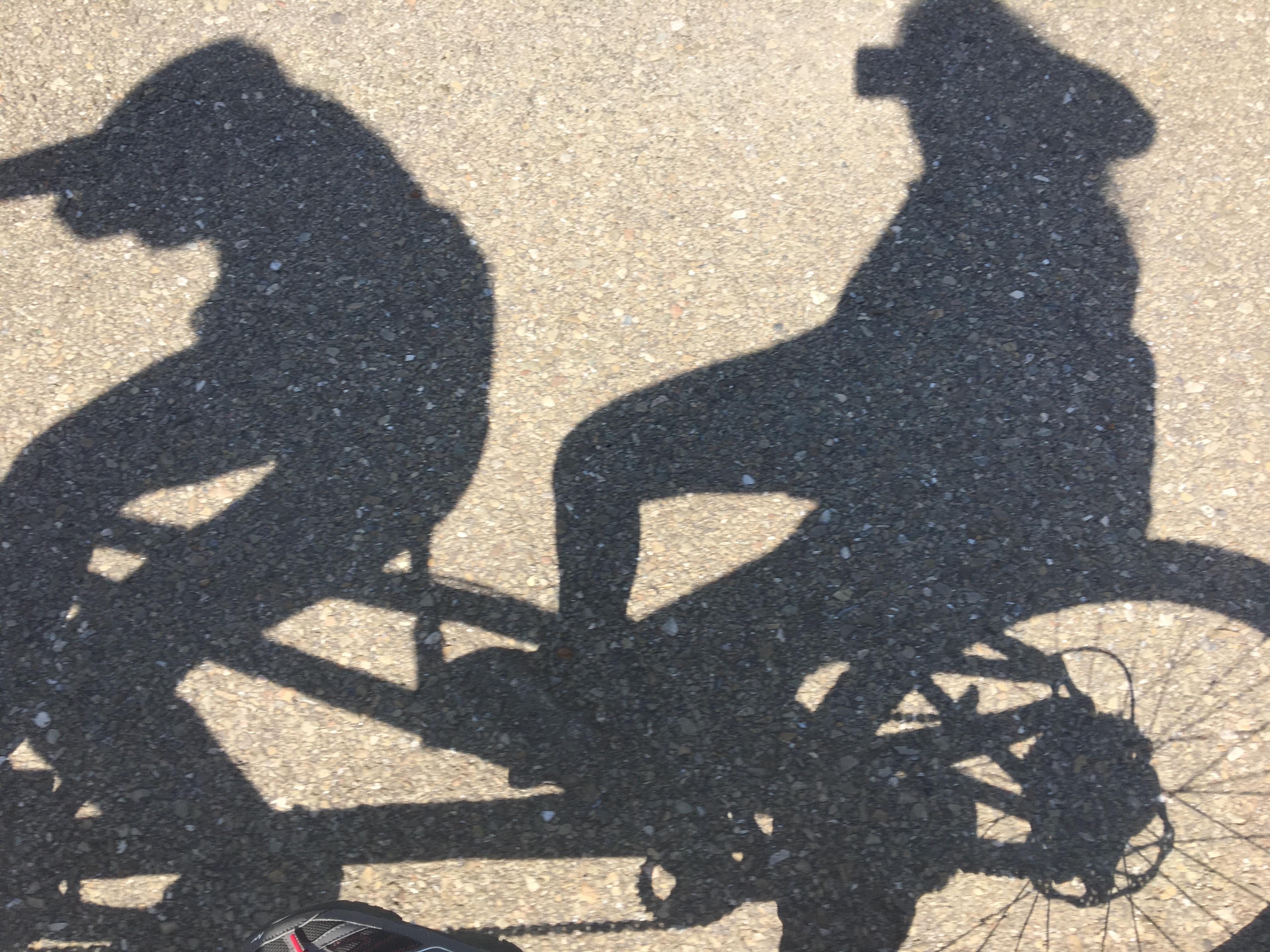 ciclism pentru vedere marca este totul despre viziune