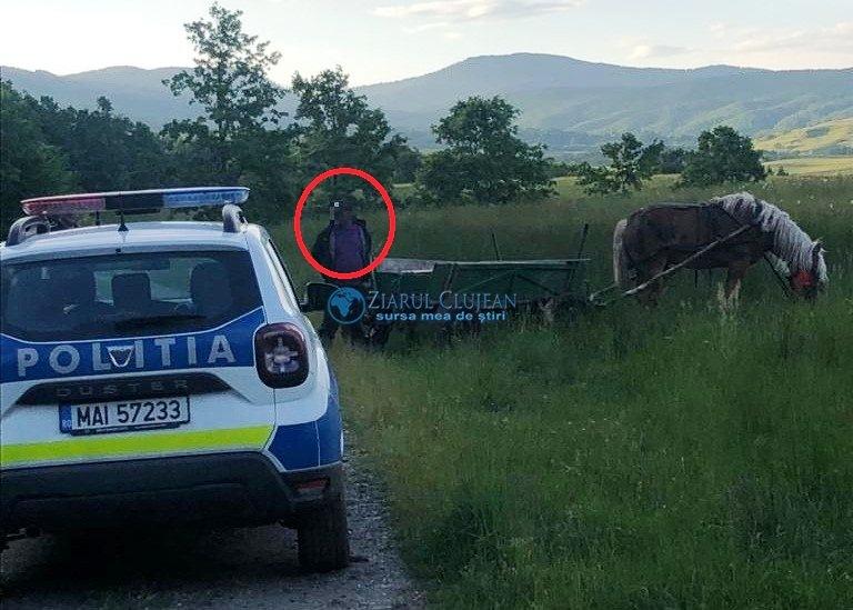 Cabalină în valoare de 20.000 de euro, furată dintr-o localitate clujeană. Autorul a fost prins în scurt timp